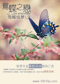 鴛蝶之戀小說下載